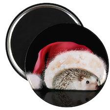 """Payton's Hat"" Magnet"