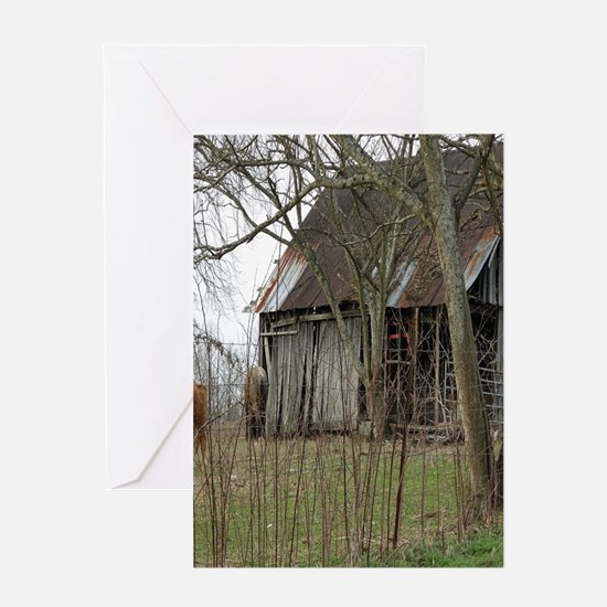 antique barn And Cows Greeting Cards