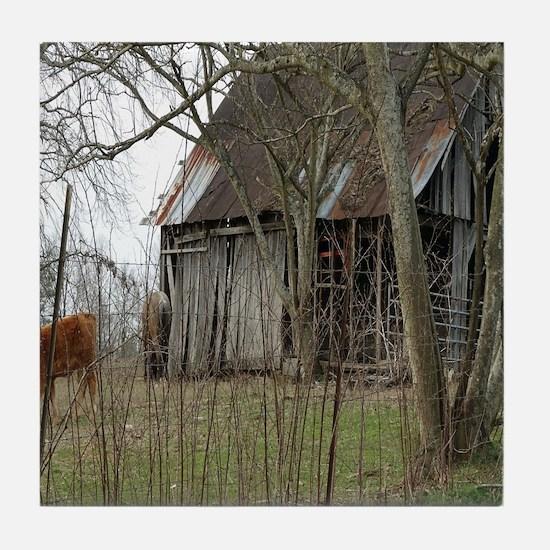 antique barn And Cows Tile Coaster