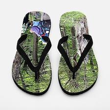 Hiking, Torres del Paine, Chile Flip Flops