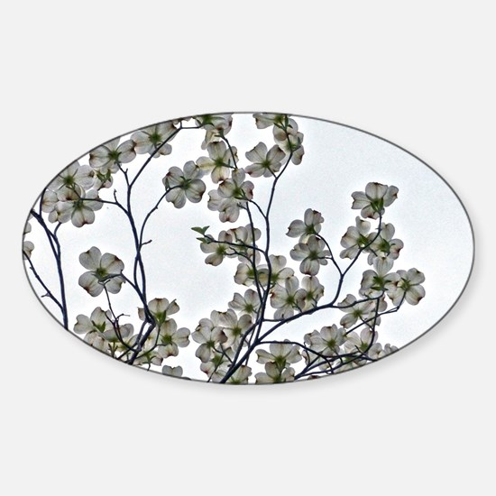 White Flowering Dogwood Decal
