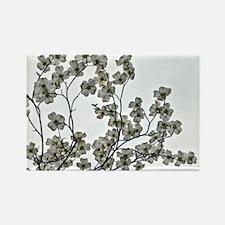White Flowering Dogwood Magnets