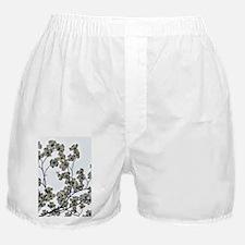 White Flowering Dogwood Boxer Shorts