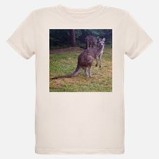 grey kangaroo Ash Grey T-Shirt