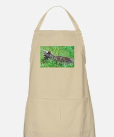 Dilute Tortie Cat Apron