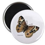 Buckeye Butterfly Magnet