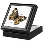 Buckeye Butterfly Keepsake Box