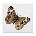 Buckeye Butterfly Tile Coaster