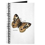 Buckeye Butterfly Journal