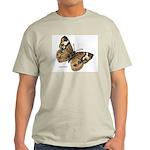 Buckeye Butterfly (Front) Ash Grey T-Shirt