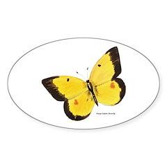 Orange Sulphur Butterfly Oval Decal