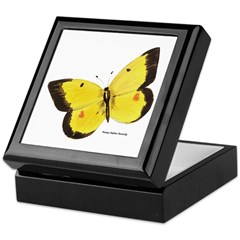 Orange Sulphur Butterfly Keepsake Box