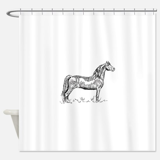 Morgan Horse In Pen & Ink Shower Curtain