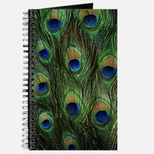 Peacock feathers on a Journal