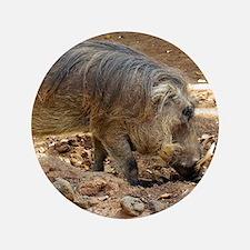 Cute Wild boar Button
