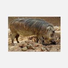 Cute Wild boar Rectangle Magnet