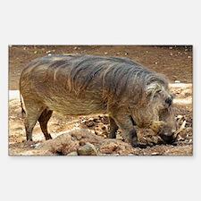 Cute Wild boar Sticker (Rectangle)