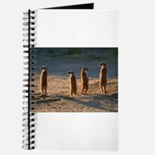 Family of meerkats Journal