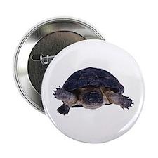 A swimming turtle Button