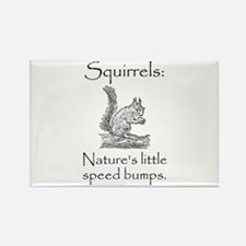 Squirrel Speed Bump Magnets
