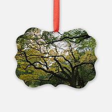 Funny Arnold Ornament