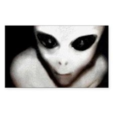 Alien Grey Rectangle Decal