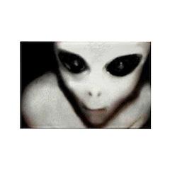 Alien Grey Rectangle Magnet