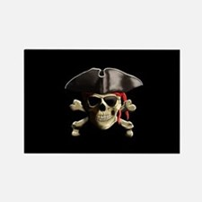 The Jolly Roger Pirate Skull Magnets
