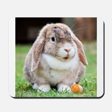 Long Eared Bunny and Carrot Mousepad