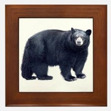 Black Bear Framed Tile