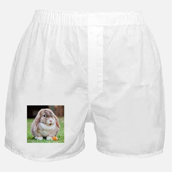 Long Eared Bunny and Carrot Boxer Shorts