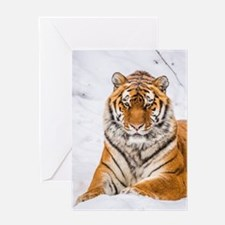 Unique Snow white tigers Greeting Card