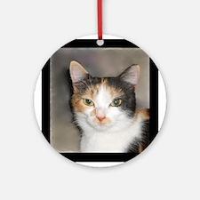Heystack Kitty Round Ornament