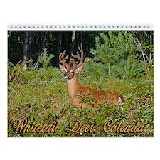 Whitetail Deer Wall Calendar