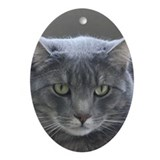 Cat Oval Ornaments