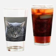 Cool Feline Drinking Glass