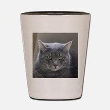 Unique Feline Shot Glass