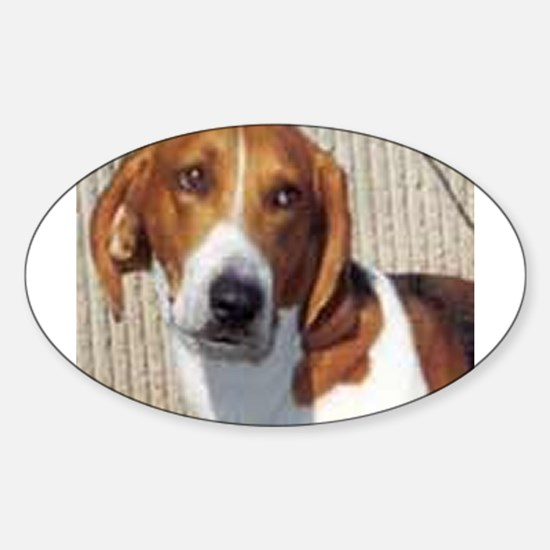 american foxhound Decal