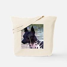 american hairless terrier Tote Bag