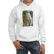 Meerkat on Stump Jumper Hoody
