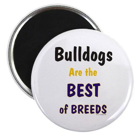 Bulldog Dog Best Of Breeds Magnet