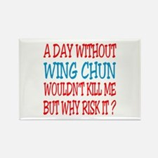 A day without Wing Chun Rectangle Magnet