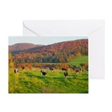 Cow Greeting Cards