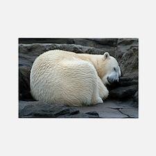 Sleepy Polar Bear Rectangle Magnet