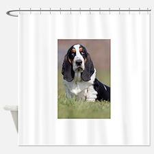 Cute Basset hound dog Shower Curtain