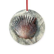 Scallop Shell Ornament (Round)