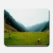 High Country Cattle Mousepad