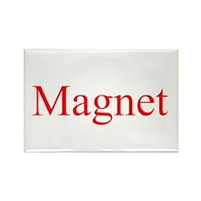 Magnet Rectangle Magnet (10 pack)