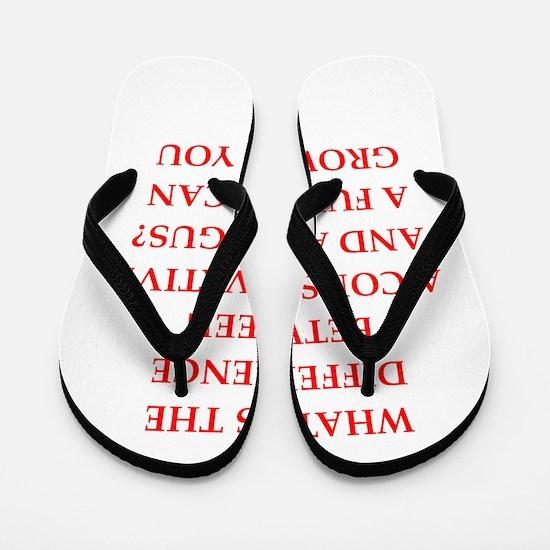 conservative Flip Flops