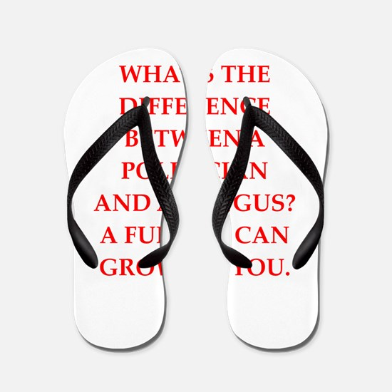 politician Flip Flops